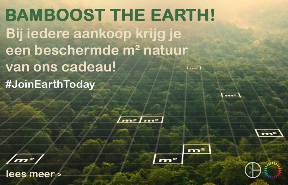 Bamboo Basics X EarthToday